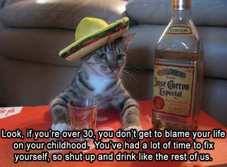 caturday - Cat - Premium ros Jose Cuervo Espeeial Look, if you're over 30, you don't get to blame your life on your childhood, Youve had a lot of time to fix yourself, so shut up and drink like the rest of us.