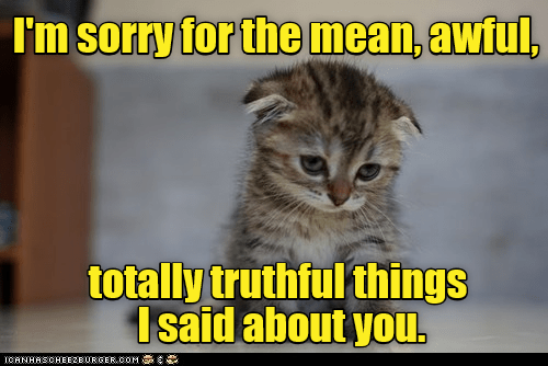 Cat - I'm sorry for the mean, awful, totally truthful things Isaid about you ICANHASCHEE2EURGER cOM