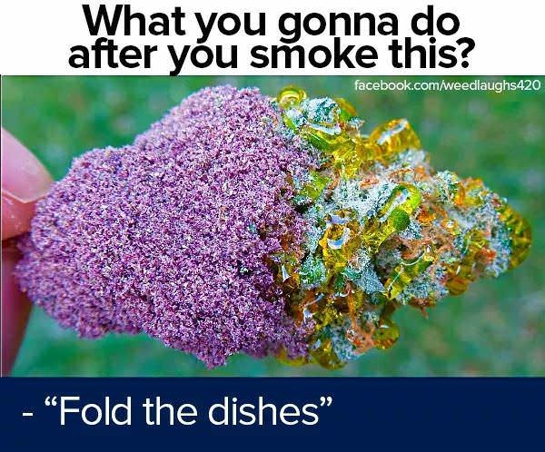 """memes - Organism - What you gonna do after yóu smoke this? facebook.com/weedlaughs420 - """"Fold the dishes"""""""