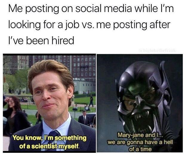i'm something of a scientist myself about posting when you are looking for a job