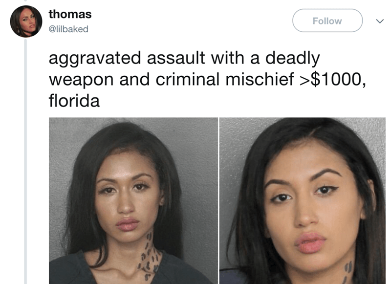 Face - thomas Follow @lilbaked aggravated assault with a deadly weapon and criminal mischief >$1000, florida