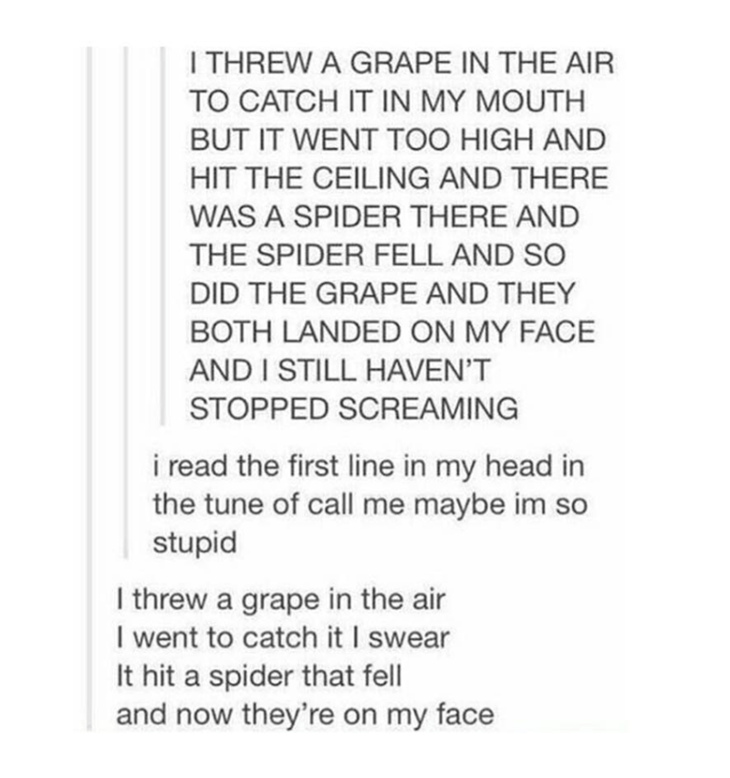 Text - I THREW A GRAPE IN THE AIR TO CATCH IT IN MY MOUTH BUT IT WENT TOO HIGH AND HIT THE CEILING AND THERE WAS A SPIDER THERE AND THE SPIDER FELL AND SO DID THE GRAPE AND THEY BOTH LANDED ON MY FACE AND I STILL HAVEN'T STOPPED SCREAMING i read the first line in my head in the tune of call me maybe im so stupid I threw a grape in the air I went to catch it I swear It hit a spider that fell and now they're on my face