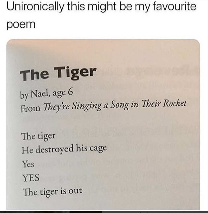Text - Unironically this might be my favourite poem The Tiger 6 by Nael, age From They're Singing a Song in Their Rocket The tiger He destroyed his cage Yes YES The tiger is out