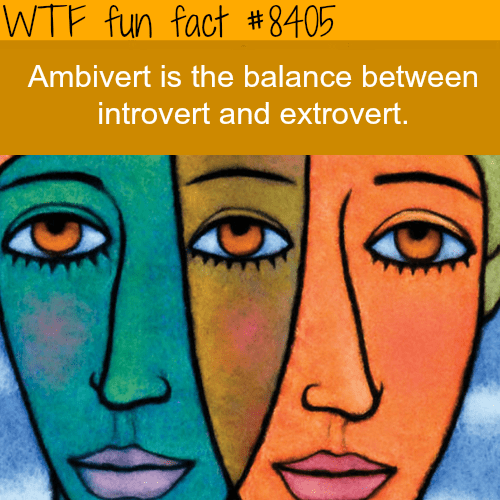 Face - WTF fun fact #8405 Ambivert is the balance between introvert and extrovert.
