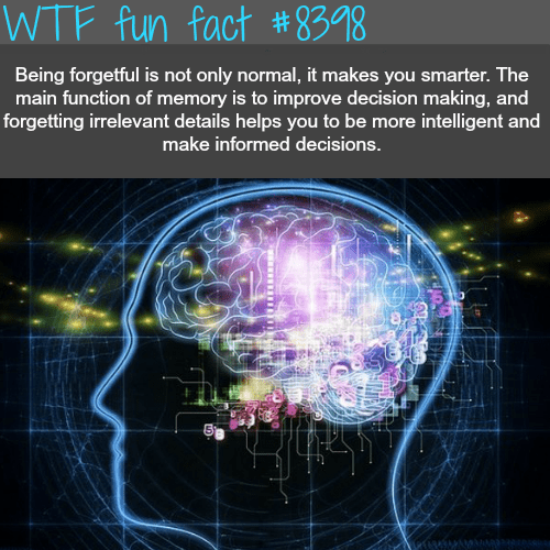 Text - WTF fun fact #8398 Being forgetful is not only normal, it makes you smarter. The main function of memory is to improve decision making, and forgetting irrelevant details helps you to be more intelligent and make informed decisions.