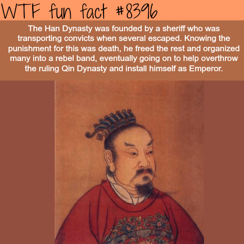 Hair - WTF fun fact # 83 The Han Dynasty was founded by a sheriff who was transporting convicts when several escaped. Knowing the punishment for this was death, he freed the rest and organized many into a rebel band, eventually going on to help overthrow the ruling Qin Dynasty and install himself as Emperor.