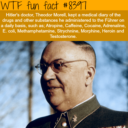 Album cover - WTF fun fact #8397 Hitler's doctor, Theodor Morell, kept a medical diary of the drugs and other substances he ministered to the Führer on a daily basis, such as; Atropine, Caffeine, Cocaine, Adrenaline, E. coli, Methamphetamine, Strychnine, Morphine, Heroin and Testosterone.