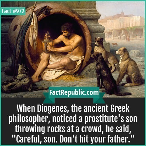 """fun fact - Text - Fact #972 FactRepublic.com When Diogenes, the ancient Greek philosopher, noticed a prostitute's son throwing rocks at a crowd, he said, """"Careful, son. Don't hit your father."""""""