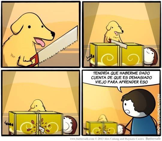 perro viejo para aprender trucos de magia