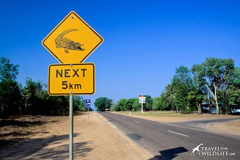Road - NEXT 5km P TRAVELFOR WILDLIFE.com