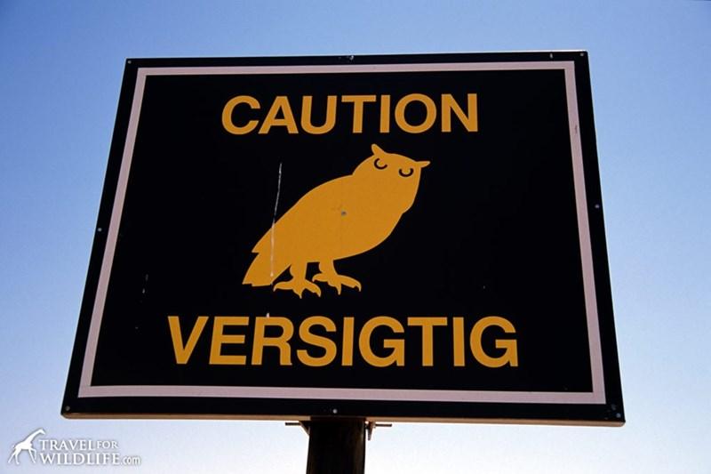 Signage - CAUTION VERSIGTIG TRAVELFOR VWILDLIFE.com