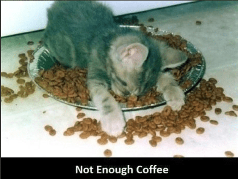 Organism - Not Enough Coffee