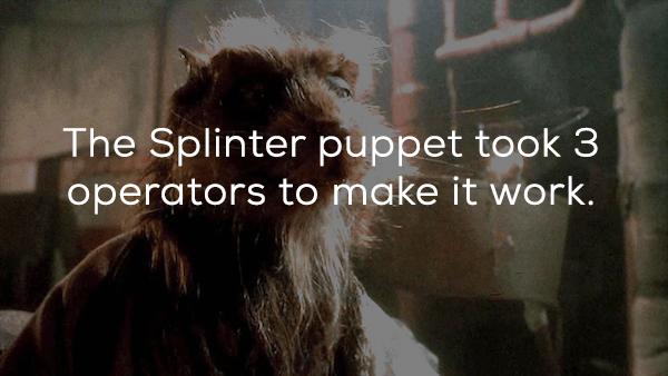 Adaptation - The Splinter puppet took 3 operators to make it work