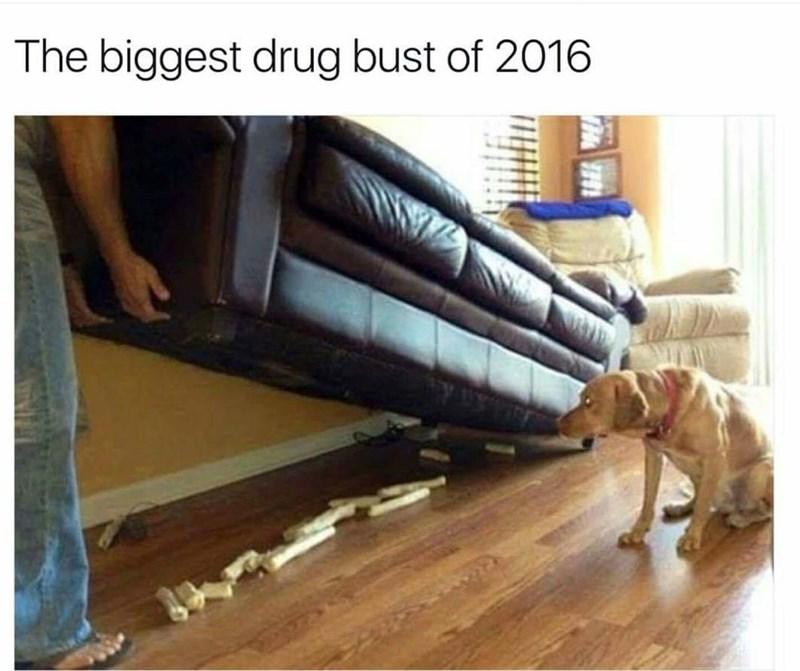 Floor - The biggest drug bust of 2016