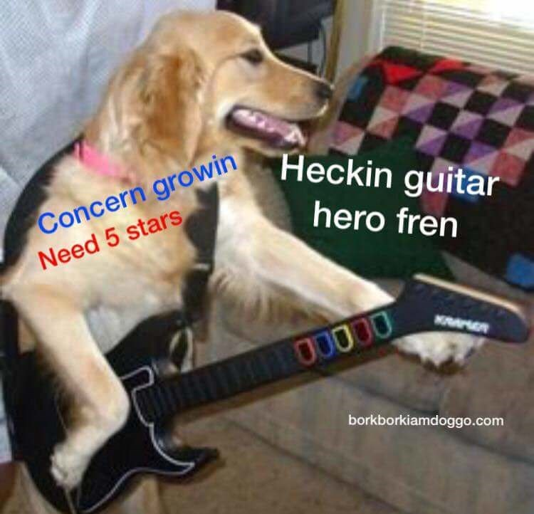 Dog - Concern growin Need 5 stars Heckin guitar hero fren MAMR 00000 borkborkiamdoggo.com