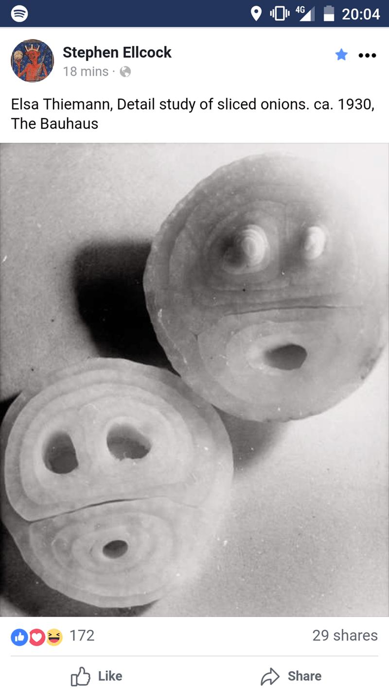 4G 20:04 Stephen Ellcock 18 mins Elsa Thiemann, Detail study of sliced onions. ca. 1930, The Bauhaus 29 shares 172 Like Share