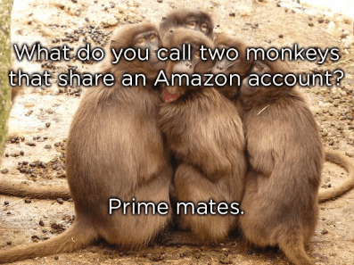 Mammal - 56 What do you call two monkeys that share an Amazon account? Prime mates.