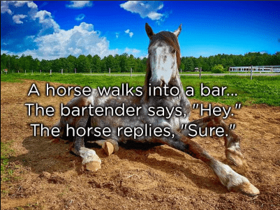 "Horse - A horse walks into a bar... The bartender says ""Hey"" The horse replies, ""Sure"