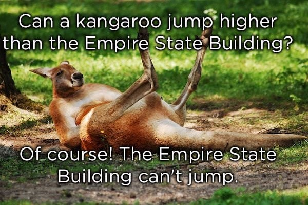 dad joke - Wildlife - Can a kangaroo jump higher than the Empire State Building? Of course! The Empire State Building can't jump