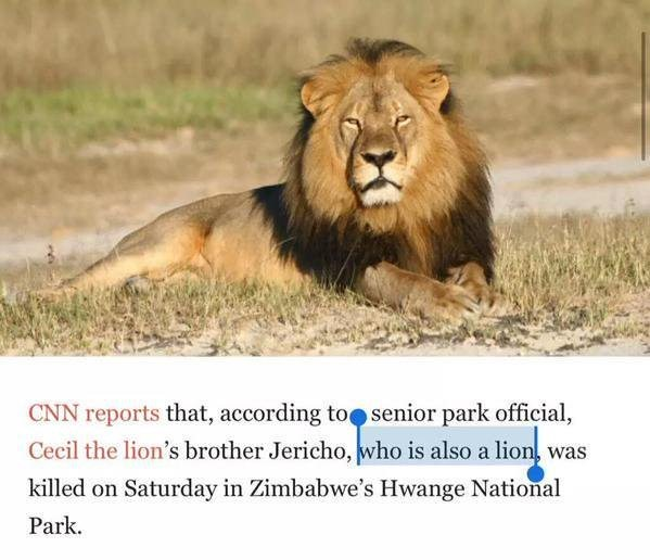 screenshot of news article CNN reports that, according to senior park official Cecil the lion's brother Jericho, who is also a lion was killed on Saturday in Zimbabwe's Hwange National Park