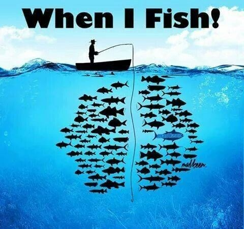 fish meme about fishing and never being able to catch anything
