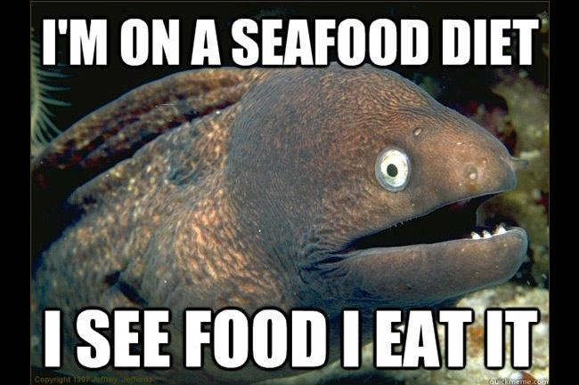 24 Hilarious Fish Memes Proving You Can Be Funny Without Even Talking - I  Can Has Cheezburger?