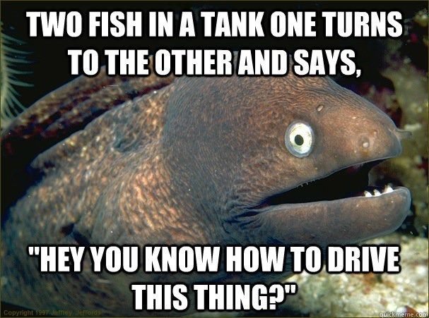 fish meme of two fish asking if they know how to drive a tank