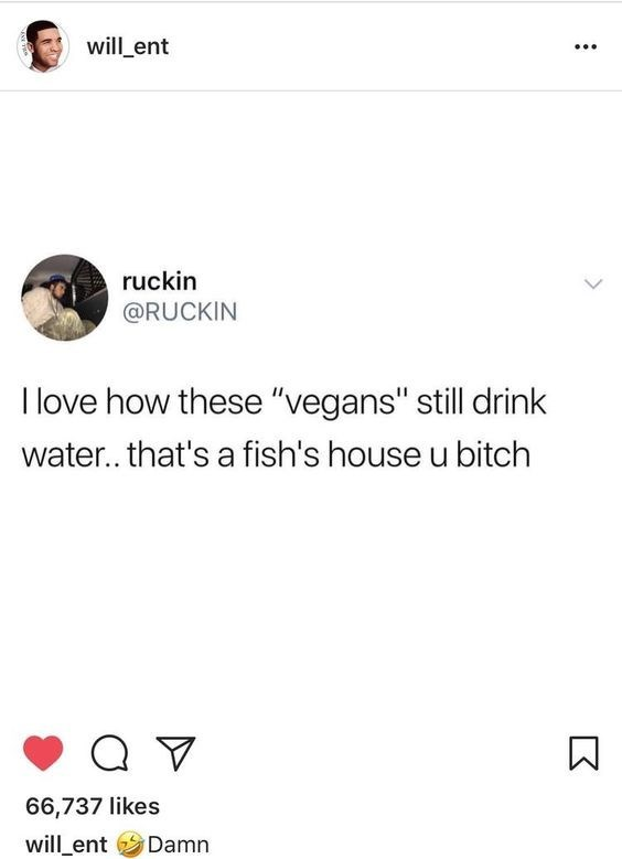 fish meme about vegans drinking water that is a fish's house