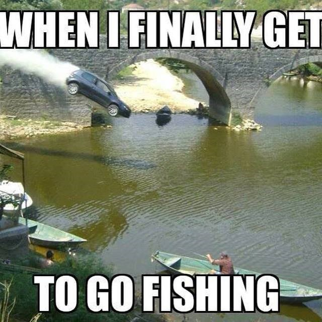 fish meme of a car plunging into a river