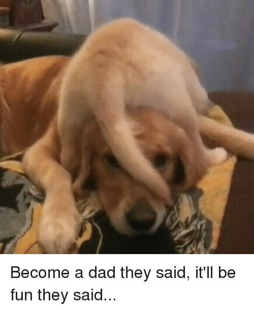 Canidae - Become a dad they said, itll be fun they said...