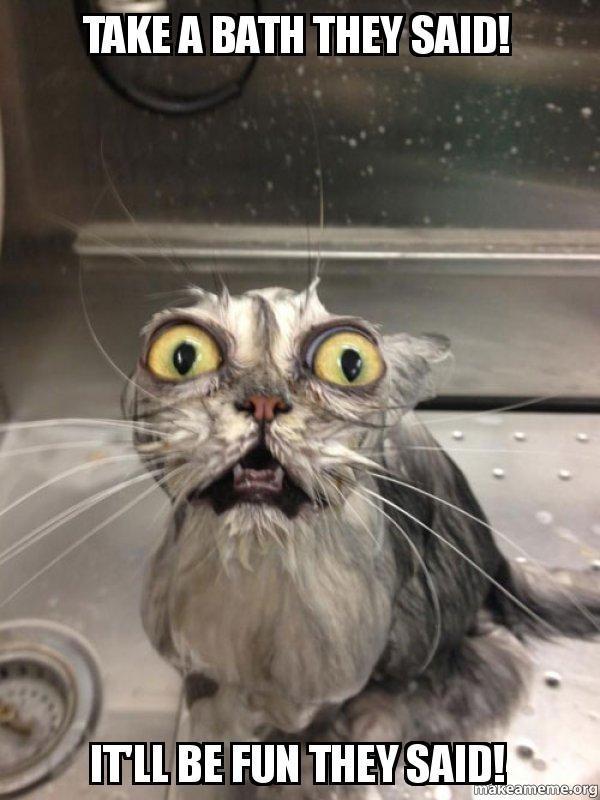 Photo caption - TAKE A BATH THEY SAID! ITLL BE FUN THEYSAID! makeameme.org