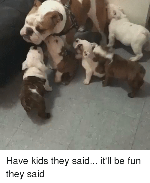 Dog - Have kids they said... it'll be fun they said