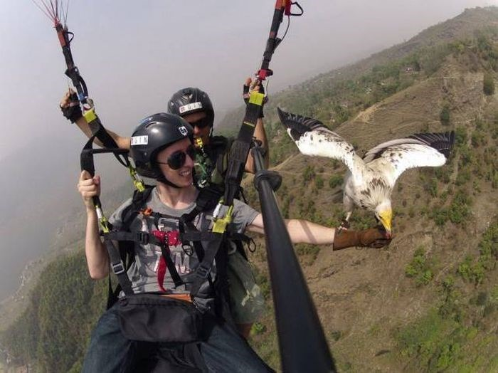 Paragliding - IN