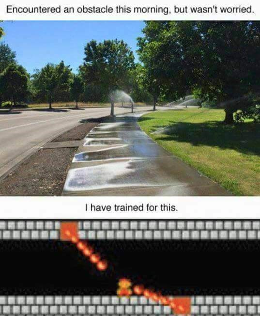 Asphalt - Encountered an obstacle this morning, but wasn't worried I have trained for this.