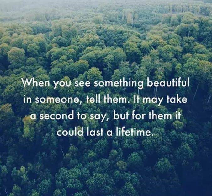 Vegetation - When you see something beautiful in someone, tell them. It may take a second to say, but for them it could last a lifetime.