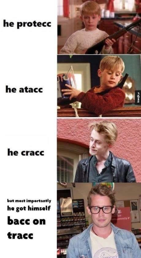 Funny meme about macaulay culkin