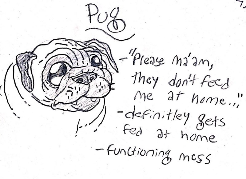 """dog - Text - PuB -""""Prease ma'am, they dont feed Me af home. 11 -definitley gets Fed at home -Funtioning mess"""
