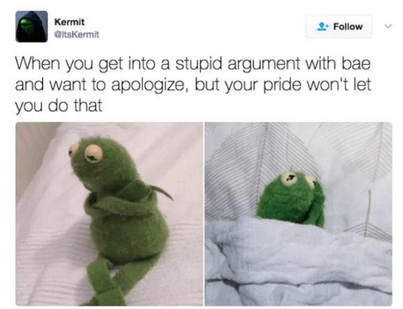 Green - Kermit Follow @ltsKermit When you get into a stupid argument with bae and want to apologize, but your pride won't let you do that