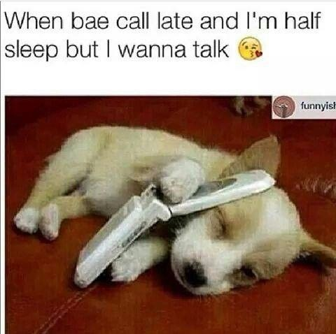 Canidae - When bae call late and I'm half sleep but I wanna talk funnyis