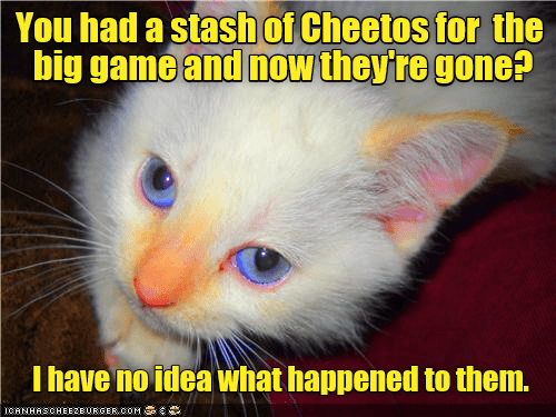 Cat - You had a stash of Cheetos for the big game and now they're gone? I have no idea what happened to them. ICANHASCHEE2EURGER cOM