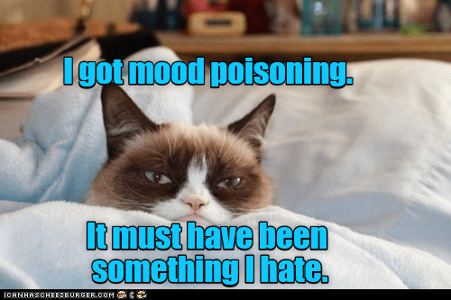 Photo caption - Dgotmood poisoning tmust have been something I hate ICANHASCHEEZEURGER COM