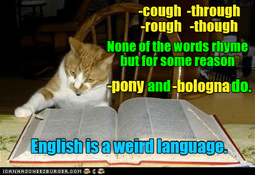 Cat - cough -through rough -though None of the words rhyme but for some reason Apony and-bolognado. English is a weirdlanguage. TOANHASOHEEZEURGER.COM