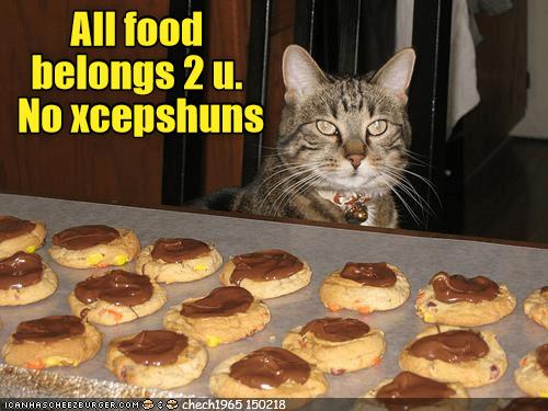 Cheezburger Image 9127830272