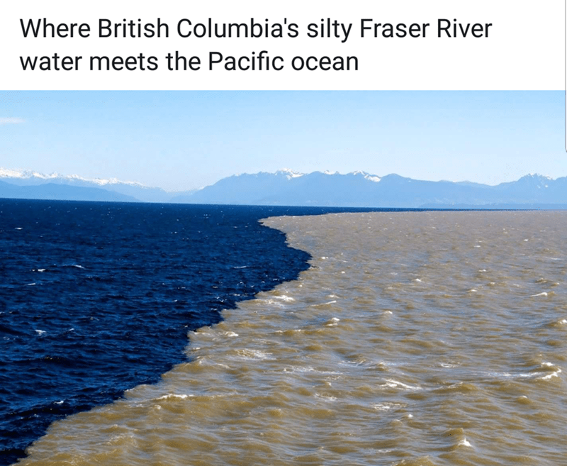 Water - Where British Columbia's silty Fraser River water meets the Pacific ocean