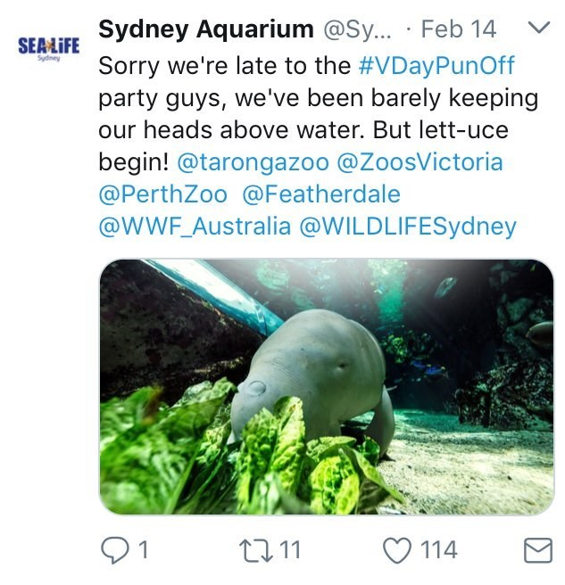 Australia new Zealand valentines - Organism - SEAFE Sydney Aquarium @Sy.. Feb 14 Sorry we're late to the #VDayPunOff party guys, we've been barely keeping our heads above water. But lett-uce V Sydney begin! @tarongazoo @ZoosVictoria @PerthZoo @Featherdale @WWF_Australia @WILDLIFESydney 1 114 ti 11