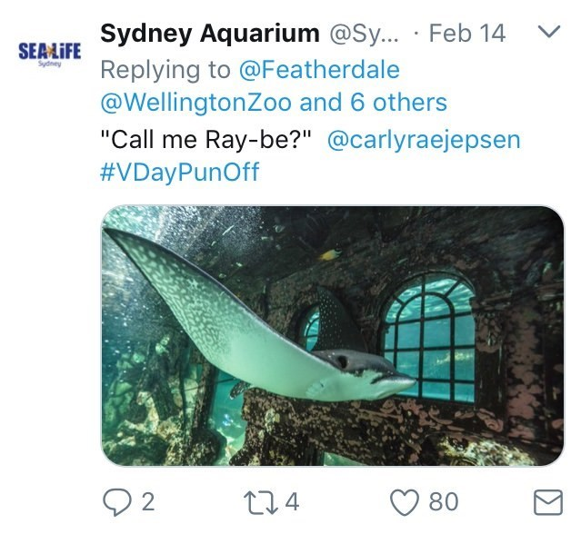 "Australia new Zealand valentines - Organism - SEALIFE Sydney Aquarium @Sy... Feb 14 Replying to @Featherdale @WellingtonZoo and 6 others ""Call me Ray-be?"" @carlyraejepsen #VDayPunOff 2 t24 80"