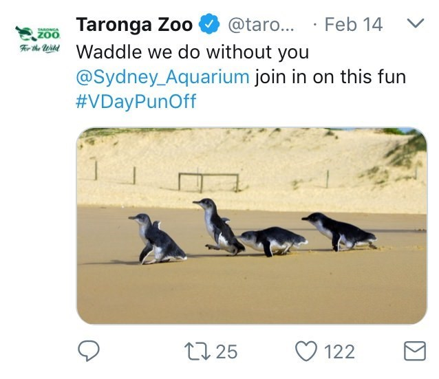 Australia new Zealand valentines - Text - Taronga Zoo Waddle we do without you @taro... Feb 14 80NGA ZOO @Sydney_Aquarium join in on this fun #VDayPunOff t125 122