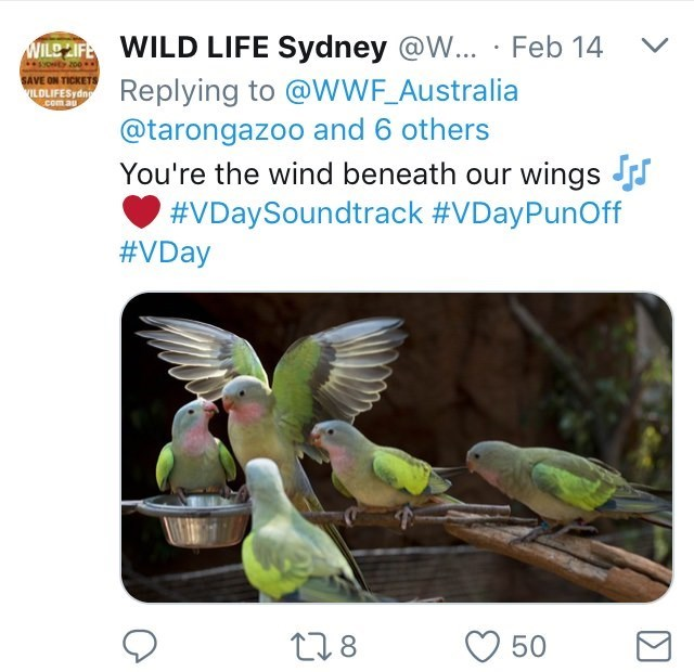 Australia new Zealand valentines - Bird - ILE FWILD LIFE Sydney @W... Feb 14 Replying to @wWF_Australia @tarongazoo and 6 others syONEY 200 SAVE ON TICKETS VILDLIFESydng com.au You're the wind beneath our wings J #VDaySoundtrack #VDayPunOff #VDay t18 50
