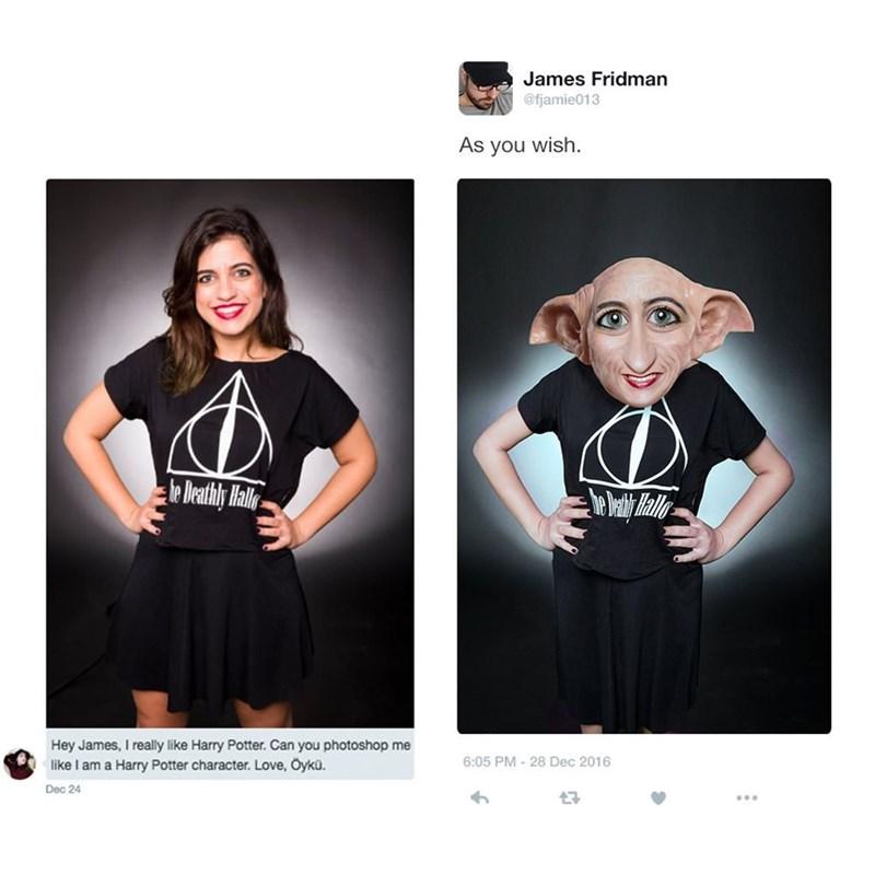meme - Black - James Fridman @fjamie013 As you wish le Deathly all Hey James, I really like Harry Potter. Can you photoshop me like I am a Harry 6:05 PM-28 Dec 2016 Love, Öykü. char Dec 24