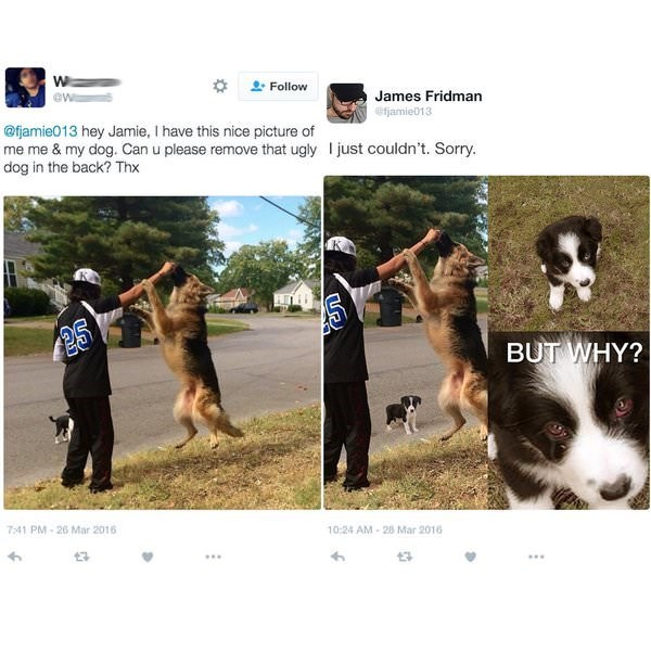 meme - Dog - Follow James Fridman @w @fjamie013 @fjamie013 hey Jamie, I have this nice picture of me me & my dog. Can u please remove that ugly just couldn't. Sorry. dog in the back? Thx BUT WHY? 10-24 AM-28 Mar 2016 7:41 PM-26 Mar 2016